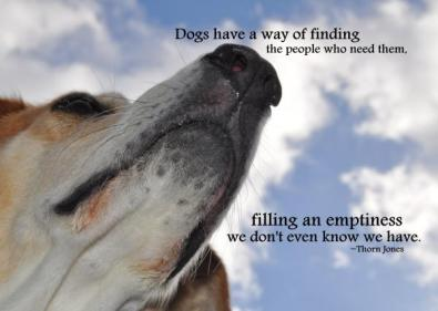 all-dogs-go-to-heaven-quote-jennifer-demeglio