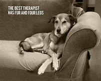 best therapist