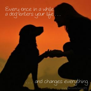 dog-lover-quotes