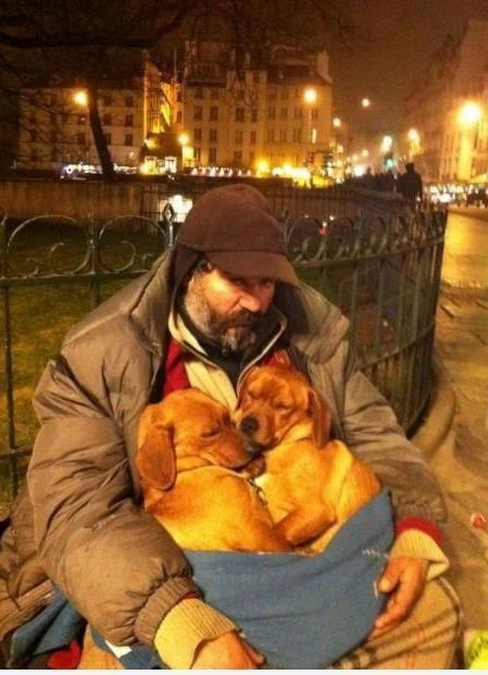 homeless-with-dogs
