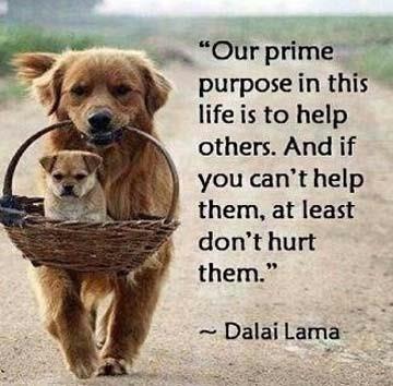 prime purpose
