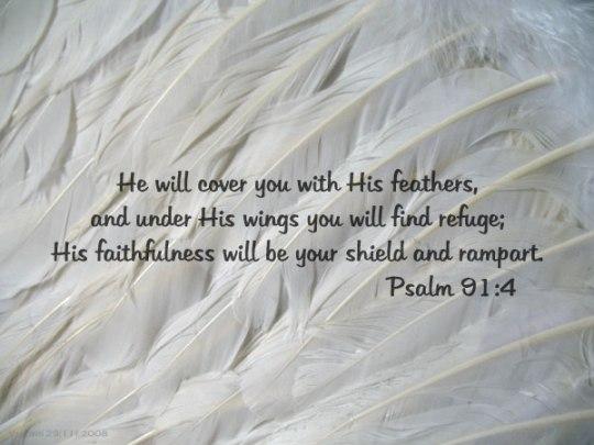 psalm91-4