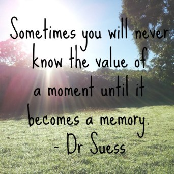 Sometimes-you-will-never-know-the-value-of-a-moment-until-it-becomes-a-memory